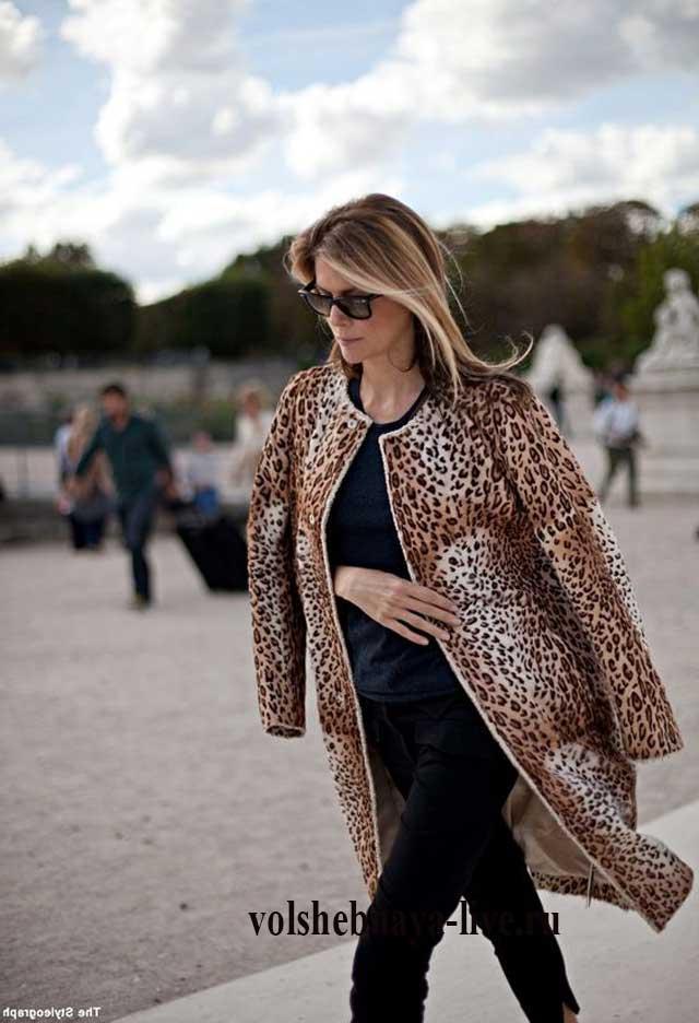 Фото-что одеть с леопардовым пальто