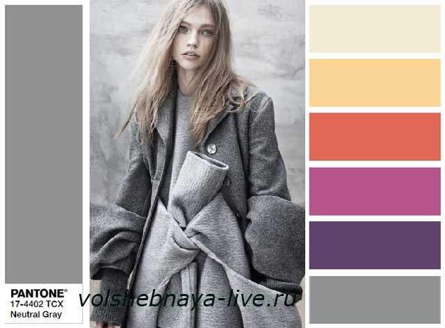 Neutral Gray